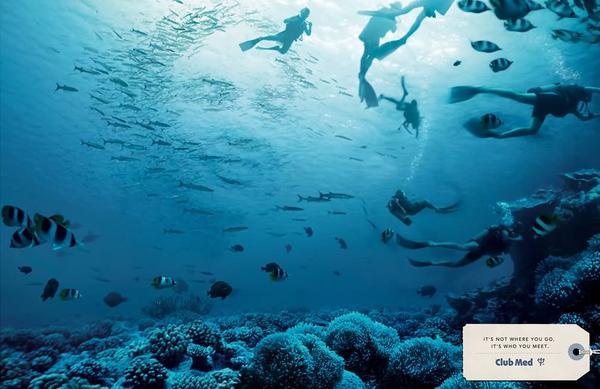 Er zijn niet alleen duikers in deze oceaan, maar ook een paar verborgen gezichten. RT als je ze ziet! http://t.co/9kV5pEbv