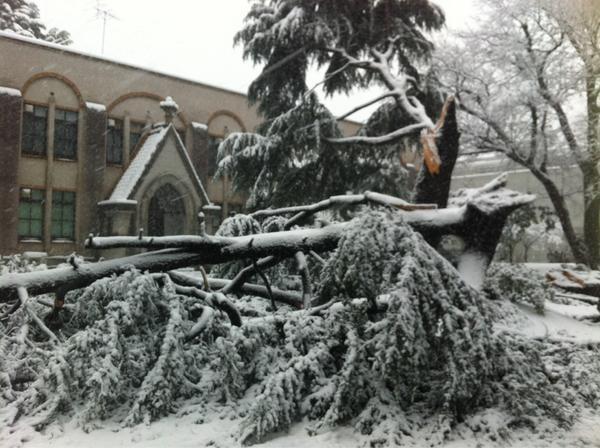 【速報】首都圏で大雪 平成最大の積雪量になるおそれも