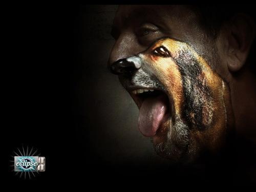Wow!! Mega vet! http://t.co/6ozJnPRQ