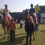 RT @rajasthanroyals: @sreesanth36 striking a mean pose atop one of the horses! A true Royal indeed!
