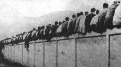 RT @TipsFutbol: El termino culé proviene de 1910 cuando los aficionados del Barcelona se sentaban en el muro y sobresalía su trasero http://t.co/YlTb7dMg