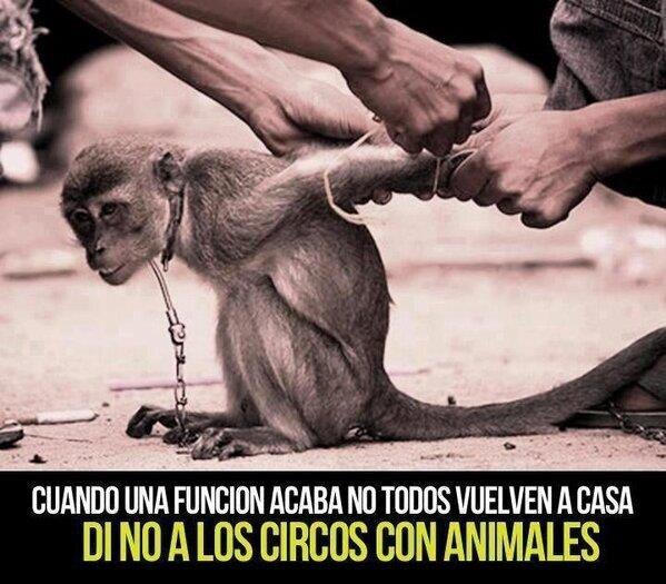 mariana echeverria o (@marianaecheve): ...... http://t.co/CDO5WzAG