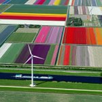 Maybe @Cmdr_Hadfield might get a shot like this of fields in Holland too? (via @pettore)