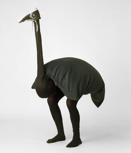 Как сделать костюм страуса своими руками