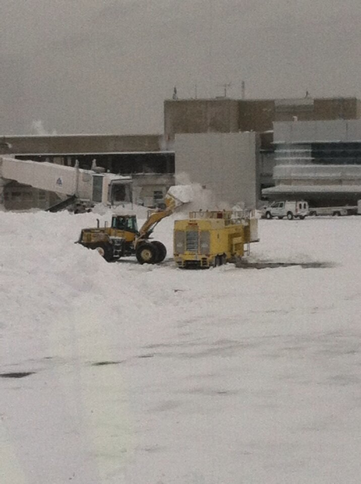 Boston Logan Airport's Twitter Photo
