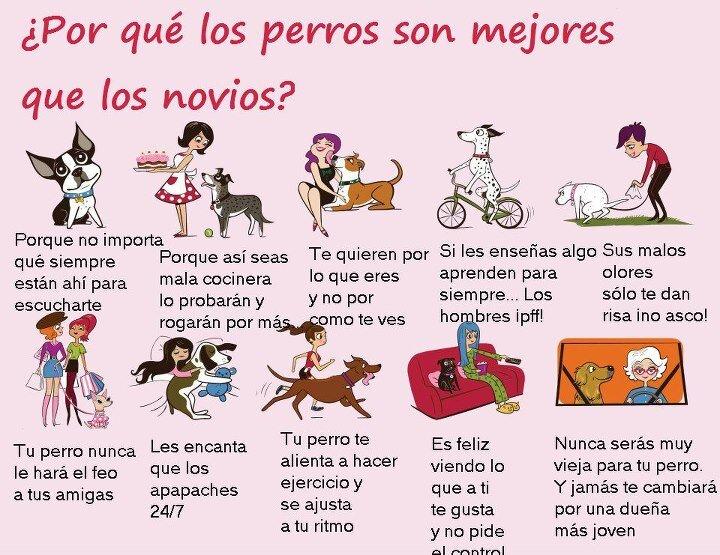 ¿Por qué los perros son mejores que los novios? Muy bueno!! http://t.co/IrHYtbXTfe