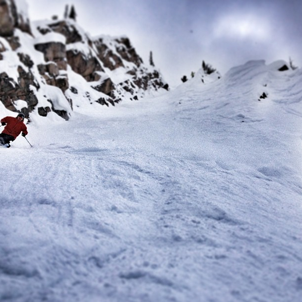 Greg Fitzsimmons (@GFitzsimmons): Searching for chutes to wrangle at @KickingHorseMtn with @gmd_surf_snow and crew. Next stop: Fairy Meadows! http://t.co/IobmRknkgv