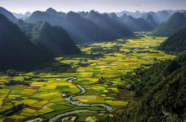 Рисовые поля в долине Баксон, Вьетнам http://t.co/u2uzGv6UCQ