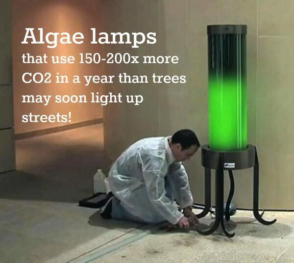 Evan Conway (@EvanConway): Kinda cool if it works.  Get rid of CO2 and light things up. http://t.co/yWgoXGpm2t
