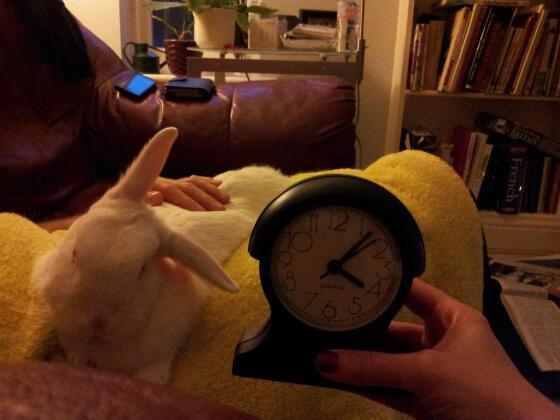 Did U remember to set the clocks ahead? #daylightsavingstime http://t.co/uSp5yzDzSw