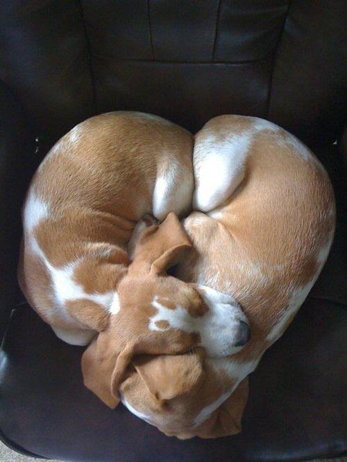 Love http://t.co/W31NRDhQYl