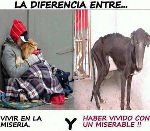 La diferencia entre vivir en la miseria y vivir con un miserable http://t.co/5AfVLqlkYO