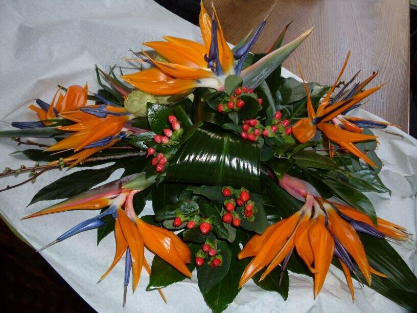 Mooi bloemstuk voor een minder mooie gelegenheid. # rouw bloemstuk met# strelitzia .schitterend mooi gemaakt ! http://t.co/xdT5g413h0
