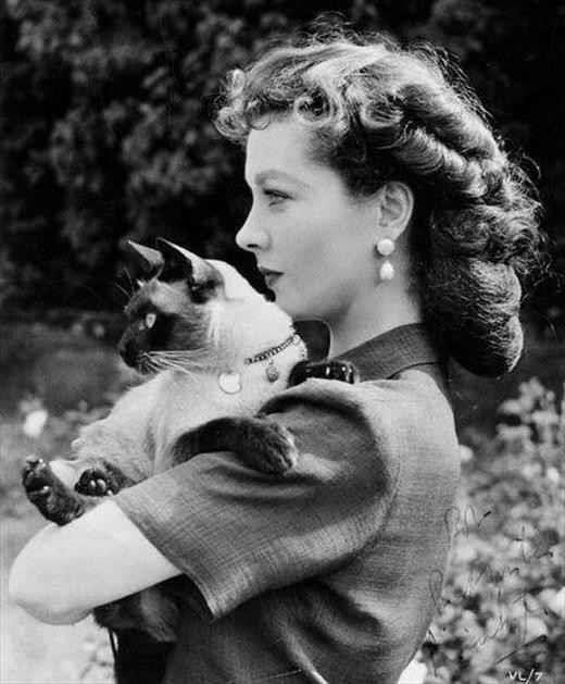 RT @4Legs4Justice: Vivien Leigh, aka Scarlett O'Hara, loved animals!  #GoneWithTheWind #love  @LindsayRGhee @ChassidyBowen http://t.co/NmCe0MdFmD