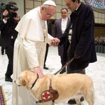 Pope Francis went out of his way n brok sum ceremonial rules 2 meet Asia,a journalists guide dog.I like him already;)