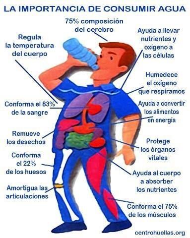 FAJAS TECNOMED ® (@FajasTecnomed): Muy importante --> Hay q Mantenerse hidratad@s constantemente, ya que es vital para nuestro cuerpo. Sabes por que? http://t.co/5GCf4FBdVQ