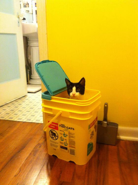 OK...I'm in here.  Now what do I do? http://t.co/prF5gsssnW