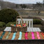 Love the eggs I dyed yesterday? get my egg dyeing iPhone app & mk beautiful eggs for Easter! http://t.co/ooq8adB7qH http://t.co/FvvxJLzbqH