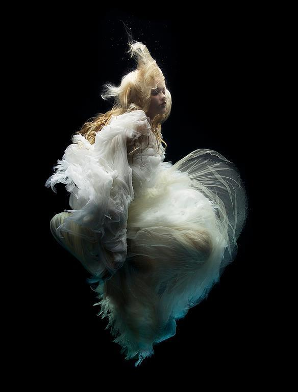 This stunning underwater photograph is by Zena Holloway who worked with Kylie Minogue, Faberge & National Geographic. http://t.co/Om3lS0nyEL
