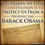 """""""@PhxKen: THE REASON WE HAVE A CONSTITUTION IS TO PROTECT US FROM A PERSON LIKE BARACK OBAMA!!!!! http://t.co/KttPoDonWk"""" PROSECUTE OBAMA"""