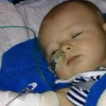 RT @heykim: ❗Little Ryven desperately needs O negative blood. Call 13 14 95 or visit http://t.co/LUK3vy0f9S