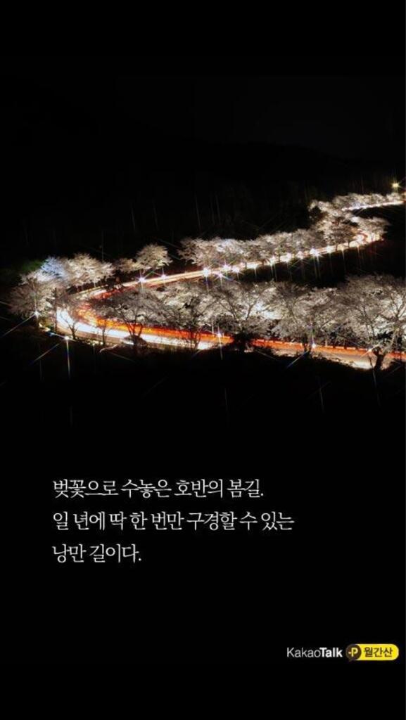 제천 청풍호 벚꽃축제. 이곳 멋지죠. http://t.co/EDOgSJ6jTM