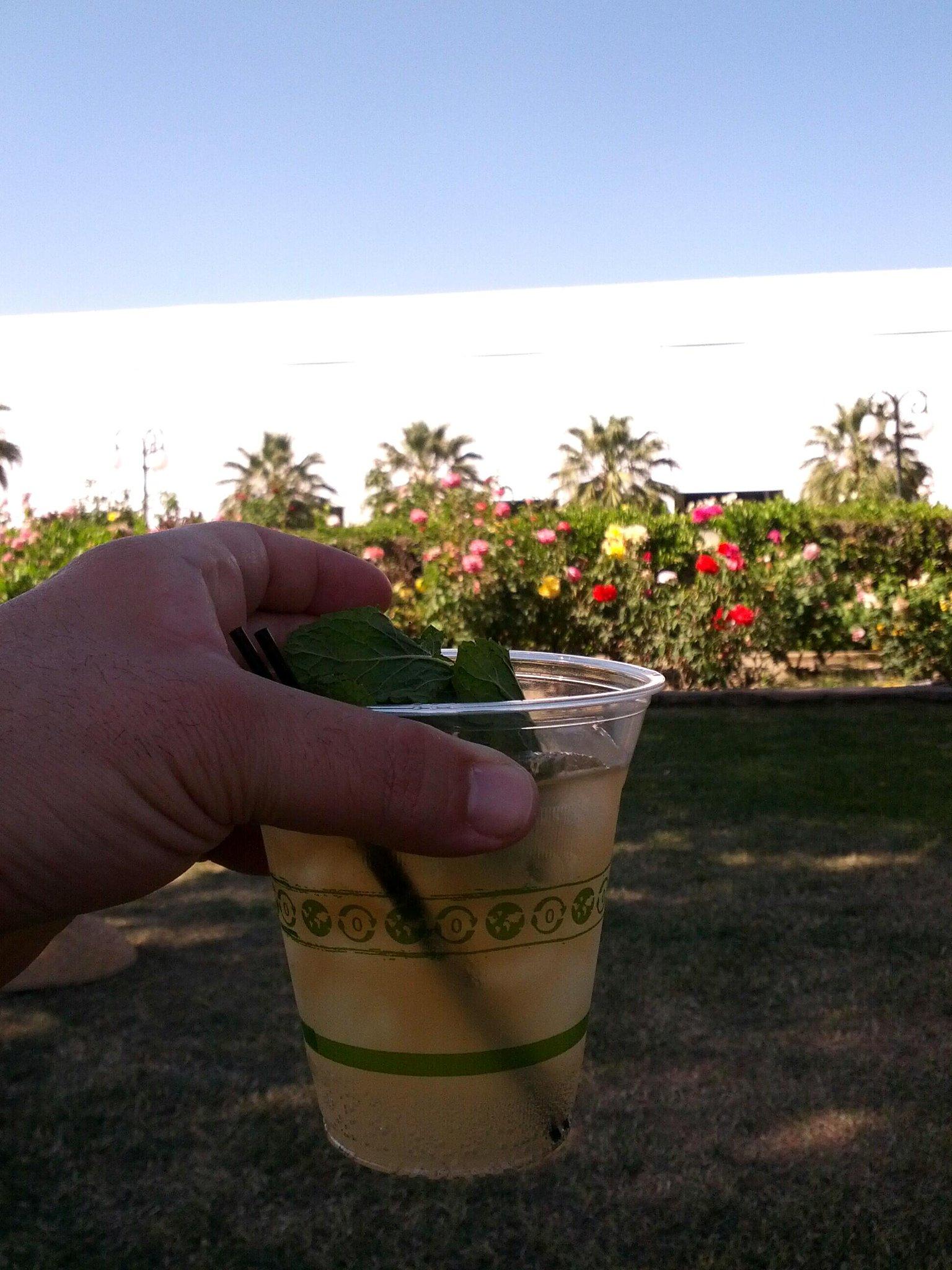 Drinking a Mule in The Rose Garden #SaveFarisFest http://t.co/Yu0ZUgpvx0
