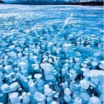 RT @ThatsEarth: Canadian Rockies, frozen bubbles. Temperatures were below 30 degrees Celsius.