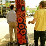 Yarn bombing spotted around DC today!