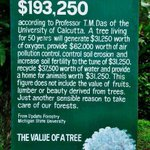 RT @takiafaridah: Wow:-) worth reading