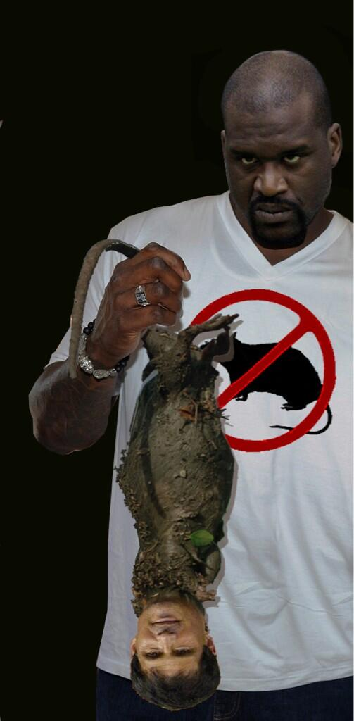 SHAQ (@SHAQ): Look  what I found , it's rAt. its a species called @JoseCanseco but there harmless. All they do is run at da mouth http://t.co/kDTSPfloj4