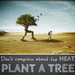 RT @keshavchowdary: @tashu_02 Please... PLANT A TREE :-)