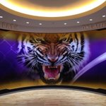 Nice! RT @LSUBasketball: MT @zkendrick: New graphics finished in the @LSUBasketball practice facility. Heres a peek. http://t.co/QQy8Hn12Si
