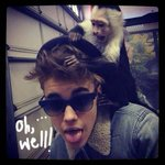 Justin Bieber's Monkey Now Officially German Property!! http://t.co/PjC7oP8HD3