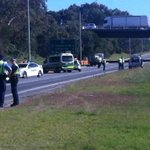 A woman has died after being hit by a truck on Tonkin Highway, Ascot. Major Crash investigating. @9NewsPerth http://t.co/UBh9aBhARy