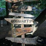 "Hogwarts and Diagon Alley! :) RT ""@9GAG: Where do we go now? http://t.co/3PXnjFpJbG"""