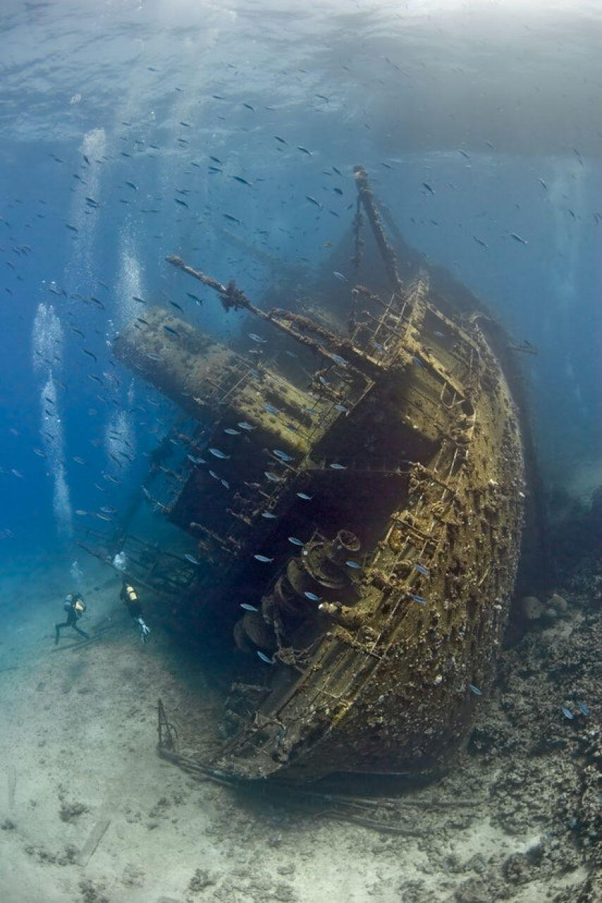 Divers explore a sunken shipwreck in the Red Sea http://t.co/rJK2a9Nker