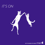 The new MSN for #Windows8. Loved by canines, felines and humines. Err, humans http://t.co/b4mO1yI7HR #knownow