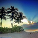 Enjoy the Saturday #sunny RT @ftlauderdalesun: Portrait of the morning. http://t.co/4XG5dvm21W