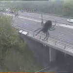 Apart from a giant spider terrorising motorists passing by #M3 J6, #Hampshires roads are now quiet &amp;amp; incident free. http://t.co/OLMSKwpJ1S