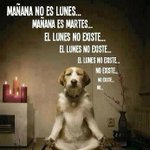 &quot;@alvaropc96: Maana no es lunes... http://t.co/Gcc4xFkPO3&quot; maana no hay mates y esto si que es verdaad jeje