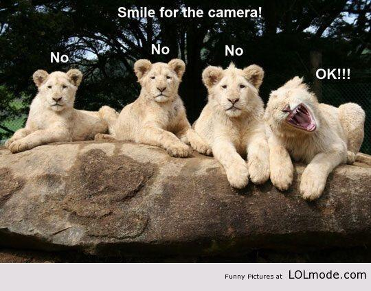 Lach naar de camera!! :) http://t.co/pzl0JC8k26