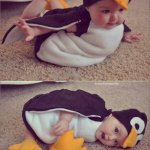 &quot;@miilkkk: If youre in a bad mood, heres a baby penguin http://t.co/14SGnSULik&quot; @jmruedita