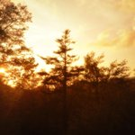 Love the view from my condo #highcountry #boonenc #sunset http://t.co/eT8iMsleLd