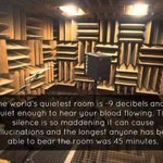 """@AmazingWorldPic: Quietest room. http://t.co/nG4kIYWKX9"" I will do this for an hour."