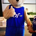 RT @DiabetesWA: Look who we spotted @PerthArena - @HBF_WA bear. He looks #readytorun for tomorrow! #hbfrun http://t.co/ZnBLWCVGHg
