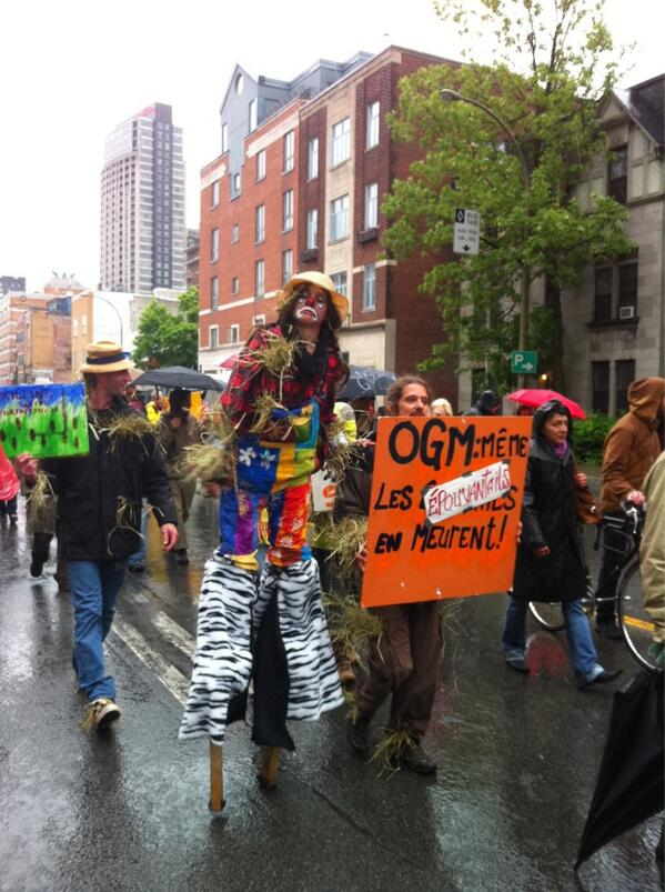 RT @frogsarelovely: Epouvantail / Scarecrow   #manifencours #MarchAgainstMonsanto #Montréal #May25 http://t.co/4bszEuqzqu