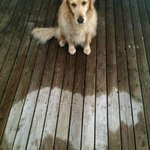 """@Splats: Who fell asleep in the rain? Did you fall asleep in the rain? Yes you did. http://t.co/1DyjUrm7l6"" Made my Sunday!!"