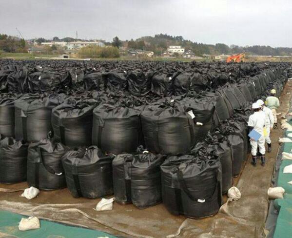 そして耐用年数が過ぎ、穴が開き、袋が破れ、日本の大地が汚染されていくことを。  RT @MIEKOSAKAI: 【福島の現実】こんな状況を一体何パーセントの日本人が知っているのだろう。毎日毎日、この黒い袋が増え続けていると言う現実を。 http://t.co/9bOuFPoe2M