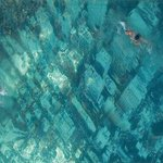 I read this pool is in #Mumbai , its Manhattan under water, symbolizing global warming..anyone knows whr it is?